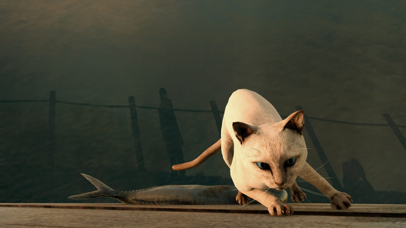 final fantasy xv cat screenshot wallaper ffxv